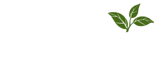 Green Ideas Landscaping Halifax Company